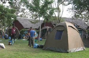 basic-camping.jpg