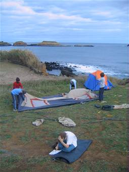 group-setting-up-tent.jpg