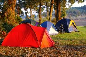 tents-on-camping-ground.png